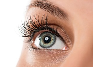 Beauty Therapy Training Courses - Image of Eyelash Lift